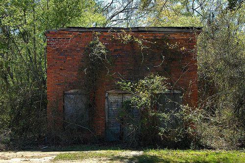 Charlotteville GA Montgomery County Ghost Town Miss Ila Mae's Store Front Abandoned Country Store Arched Front Doorway Natural Reclamation Picture Image Photograph © Brian Brown Vanishing South Georgia USA 2013