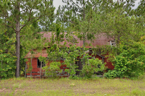 Rebecca GA Turner County Abandoned Red Tar Paper Tenant Farmhouse Picture Image Photograph © Brian Brown Vanishing South Georgia USA 2013