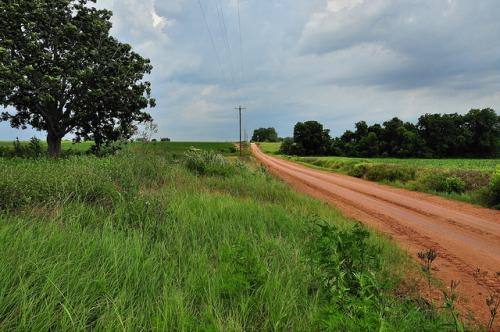 turner-county-ga-young-road-photograph-copyright-brian-brown-vanishing-south-georgia-usa-2013