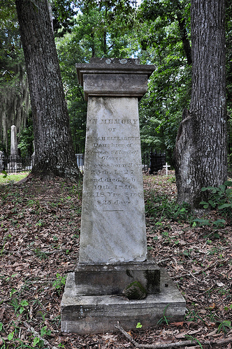 Richland Baptist Church Cemetery Twiggs County GA Historic Landmark Sarah Elizabeth Glover Headstone Image Photograph Copyright © Brian Brown Vanishing South Georgia USA 2013