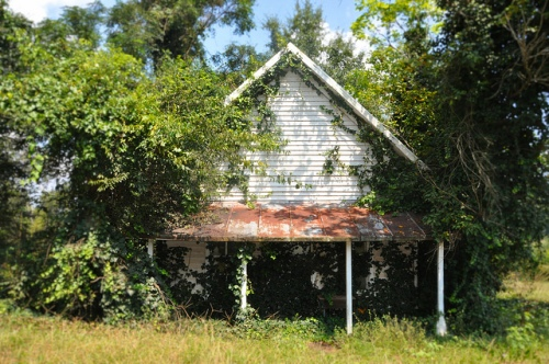 Brown's Mill Store Sumter County GA Overgrown Rural Southern Decay Vernacular Architecture Picture Image Photograph Copyright © Brian Brown Vanishing South Georgia USA 2013