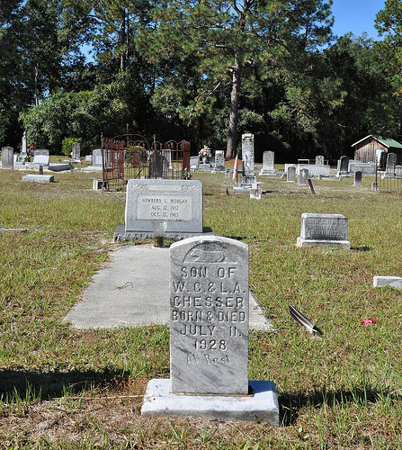 Oak Grove Primitive Baptist Church Raybon GA Brantley County Cemetery Infant Son of W. C.  & L. A. Chesser Headstone Picture Image Photograph Copyright © Brian Brown Vanishing South Georgia USA 2013