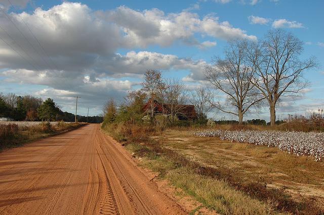 South Georgia Dirt Roads | Vanishing South Georgia ... |Georgia Country Roads