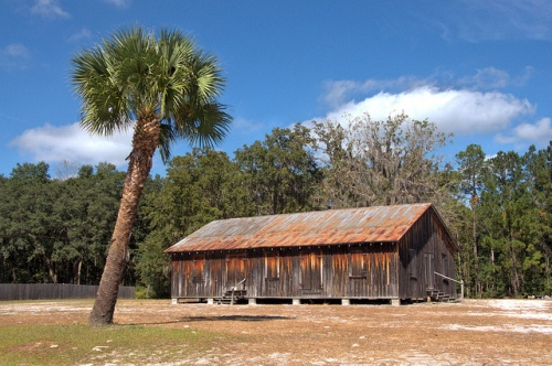 Pilgrim's Rest Primitive Baptist Church Waynesville GA Brantely County Hardshell Vernacular Architecture Board and Batten Landmark Palm Tree Picture Image Photograph Copyright © Brian Brown Vanishing South Georgia USA 2013