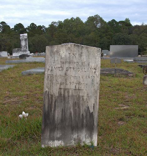 shiloh-primitive-baptist-church-blackshear-ga-pierce-county-cemetery-james-strickland-photograph-copyright-brian-brown-vanishing-south-georgia-usa-2013