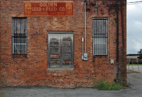 Sylvester GA Worth County Golden Seed & Feed Store Rusted FRM Sign Back Entrance Picture Image Photograph Copyright © Brian Brown Vanishing South Georgia USA 2013