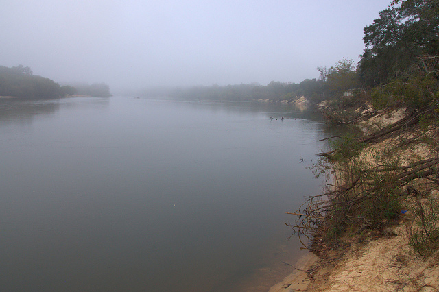 Beard's Bluff Altamaha River Long County GA Fog Photograph Copyright Brian Brown Vanishing South Georgia USA 2013
