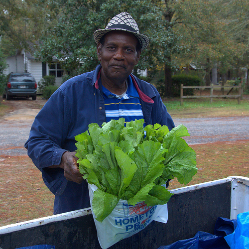 Truck Farmer Selling Mustard Greens Door to Door Long County GA Photograph Copyright Brian Brown Vanishing South Georgia USA 2013