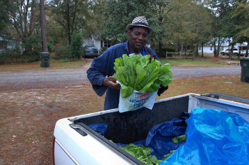 Truck Farmer Selling Mustard Greens Long County GA Photograph Copyright Brian Brown Vanishing South Georgia USA 2013