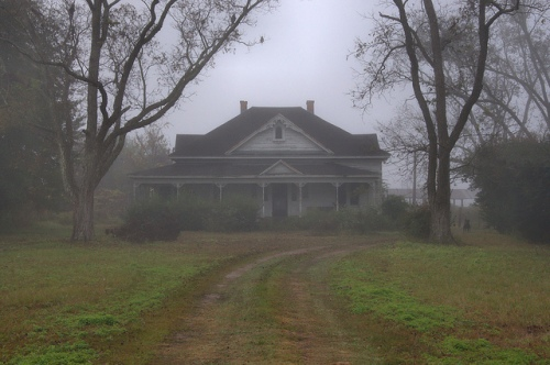 Wayne County GA Folk Victorian Farmhouse Fogg Morning Driveway Photograph Copyright Brian Brown Vanishing South Georgia USA 2013