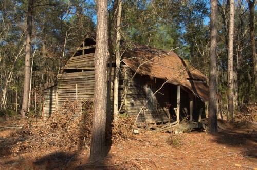Wefanie GA Long County Abandoned Farmhouse Turpentine Shack Photograph Copyright Brian Brown Vanishing South Georgia USA 2013