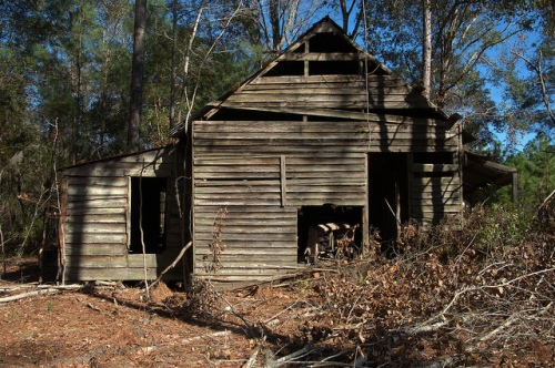 Wefanie GA Long County Abandoned Vernacular Farmhouse Turpentine Era Photograph Copyright Brian Brown Vanishing South Georgia USA 2013