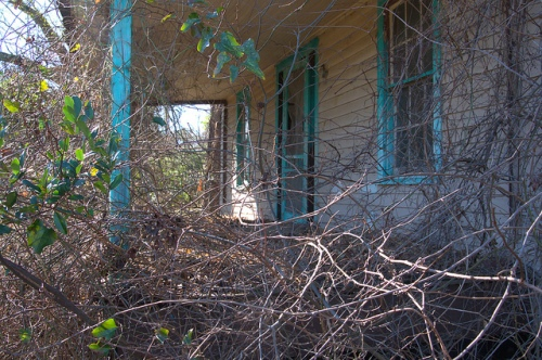 Front Porch with Sky Blue Trim Overgrown Vines Ogeechee GA Screven County Photograph Copyrigh Brian Brown Vanishing South Georgia USA 2014