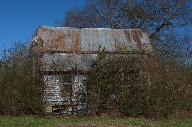 Ogeechee Ga Vanishing South Georgia Photographs By Brian Brown