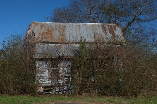 Ogeechee GA Screven County Ghost Town Cracker Cabin Vernacular Architecture Overgrown Vegetation Pale Blue Clapboard Photograph Copyright Brian Brown Vanishing South Georgia USA 2014