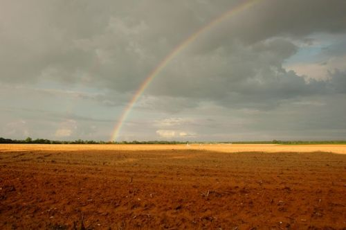 Rainbow over Plowed Field Red Clay Dirt Earth Jefferson County GA Photograph Copyright Brian Brown Vanishing South Georgia USA 2014