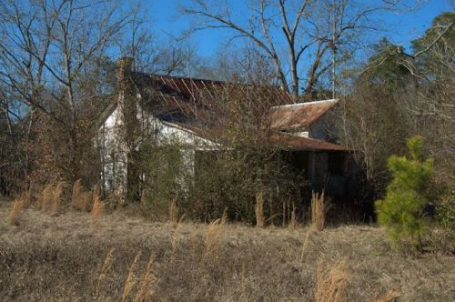 Stapleton GA Abandoned Vernacular House Asbestos Siding Rusted Tin Roof Overgrown Photograph Copyright Brian Brown Vanishing South Georgia USA 2014