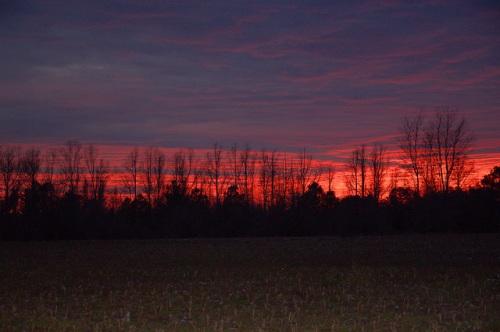 Winter Sunset Ben Hill County GA Photograph Copyright Brian Brown Vanishing South Georgia USA 2014