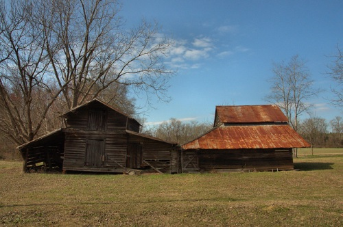 Historic Barns Cobbtown GA Tattnall County Photograph Copyright Brian Brown Vanishing South Georgia USA 2014