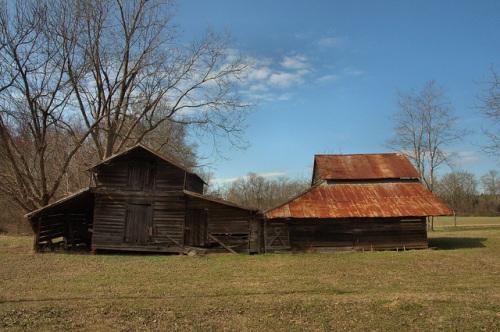Historic Barns Cobbtown GA Tattnall County Photograph Copyright Brian Brown Vanishing South Georgia USA 2014