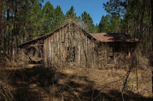 Board and Batten Tenant Farmhouse Wheeler County GA Photograph Copyright Brian Brown Vanishing South Georgia USA 2014