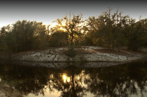 Alapaha River Sand Bar Scrublands Photograph Copyright Brian Brown Vanishing South Georgia USA 2014
