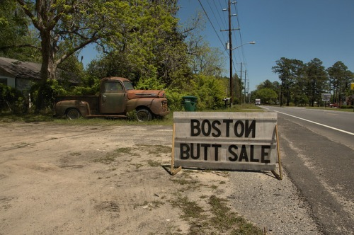 Guyton GA Effingham County Roadside Sign Boston Butt Sale Old Rusty Ford Truck Americana Rural South Photograph Copyright Brian Brown Vanishing South Georgia USA 2014