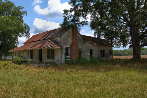 Abandoned Vernacular Farmhouse Appling County GA Pecan Tree Southern Decay Photograph Copyright Brian Brown Vanishing South Georgia USA 2014