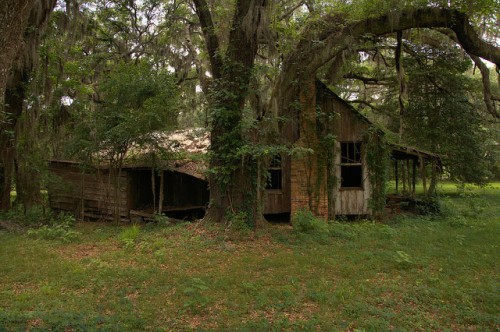 Board and Batten Farmhouse Under Ancient Live Oak Rear Kitchen Toombs County GA Photograph Copyright Brian Brown Vanishing South Georgia USA 2014