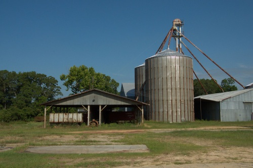 Milan GA Dodge County Peanut Company Silos Barns Photograph Copyright Brian Brown Vanishing South Georgia USA 2014