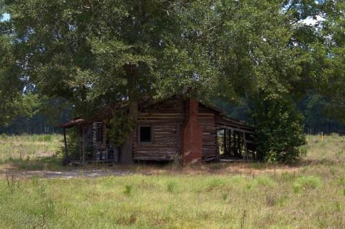 Old Log Farm House Tenant Era Endangered Vernacular Architecture Tattnall County GA Photograph Copyright Brian Brown Vanishing South Georgia USA 2014