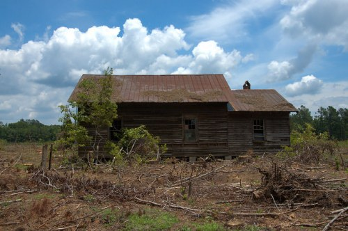 Screven County GA Abandoned Farmhouse Unpainted Clapboard Siding Clearcut Timber Hunting Land Forgotten Abandoned Photograph Copyright Brian Brown Vanishing South Georgia USA 2014