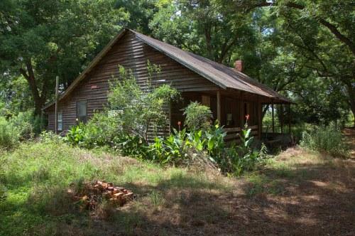 Tattnall County GA Old Farmhouse Vernacular Architecture Pecan Orchard Photograph Copyright Brian Brown Vanishing South Georga USA 2014