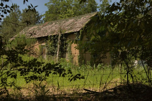 Wooden Shingle Roof House Tar Paper Behind Ben Hill County GA Photograph Copyright Brian Brown Vanishing South Georgia USA 2014