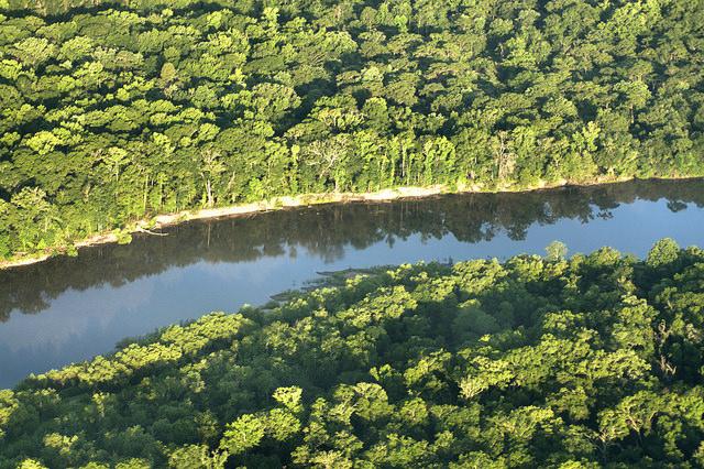 Altamaha River Aerial McIntosh County GA Photograph Copyright Brian Brown Vanishing South Georgia USA 2014