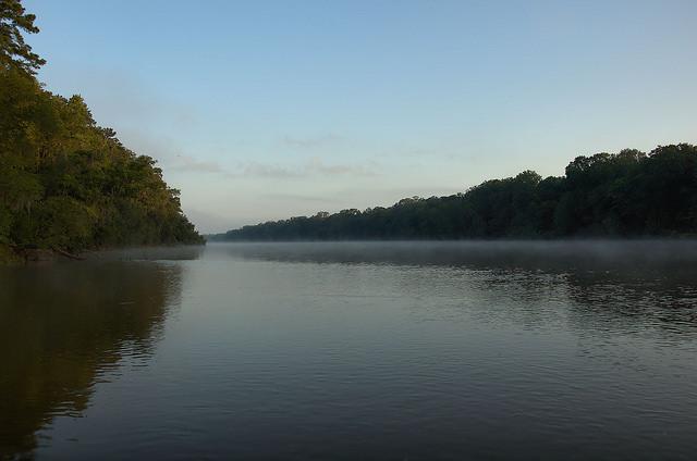Altamaha River Daybreak Fog Wayne County GA Photograph Copyright Brian Brown Vanishing South Georgia USA 2014