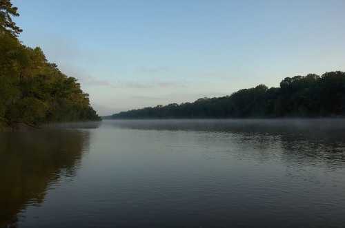 Altamaha River Daybreak Fog Wayne County GA Photograph Copyright Brian Brown Vanishing South Georgia USA 2014