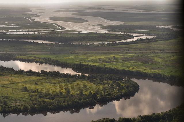 Altamaha River Delta Aerial McIntosh County GA Photograph Copyright Brian Brown Vanishing South Georgia USA 2014