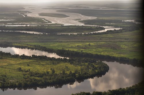 Altamaha River Delta Aerial McIntosh County GA Photograph Copyright Brian Brown Vanishing South Georgia USA 2014
