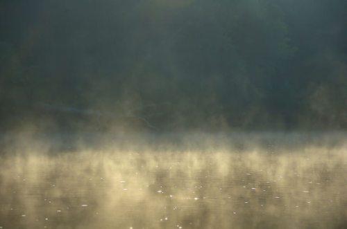 Altamaha River Wayne County GA Early Morning Fog Bank Photograph Copyright Brian Brown Vanishing South Georgia USA 2014