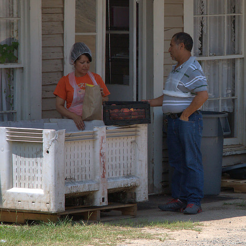 Musella GA Crawford County Peach Pickers Farm Labor Photograph Copyright Brian Brown Vanishing South Georgia USA 2014