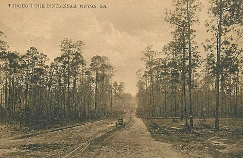Tifton GA Antique Postcard Early Automobile Dirt Road Pine Trees Collection of Brian Brown Vanishing SOuth Georgia USA 2014