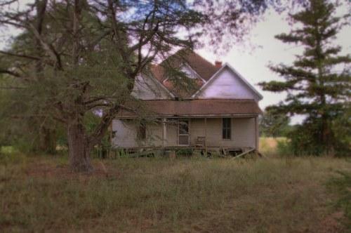 Ben Hill County GA Abandoned Farmhouse Cedar Trees Photograph Copyright Brian Brown Vanishing South Georgia USA 2014