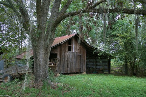 Long County GA Baxter Farm Smokehouse Photograph Copyright Brian Brown Vanishing South Georgai USA 2014