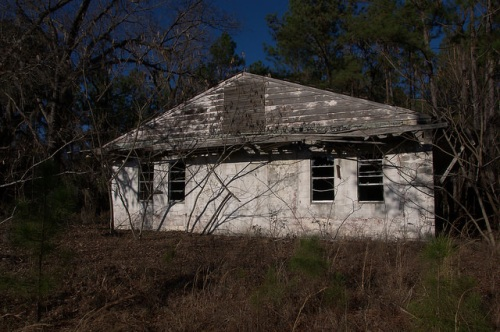 Piney Pig Juke Joint Long County GA Photograph Copyright Brian Brown Vanishing South Georgia USA 2015