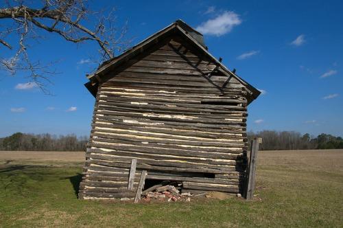 Tattnall County GA Adamsons Split Log Tobacco Barn Photograph Copyright Brian Brown Vanishing South Georgia USA 2015