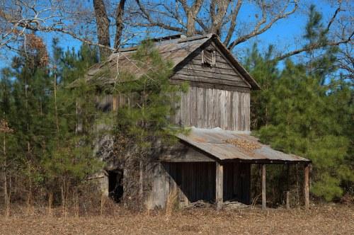 Tobacco Barn Hagan Mill Pond Road Bulloch County GA Photograph Copyright Brian Brown Vanishing South Georgia USA 2015