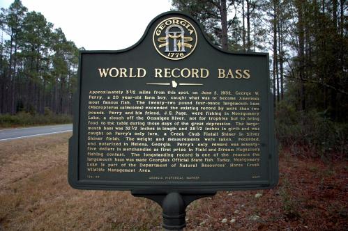 world-record-largemouth-bass-fishing-angling-telfair-county-ga-horse-creek-picture-photo-image-cc-brian-brown-vanishing-south-georgia-usa-2009