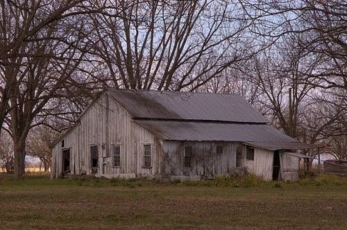 Hughland Community Tattnall County GA Board and Batten Farmhouse Pecan Orchard Photograph Copyright Brian Brown Vanishing South Georgia USA 2015