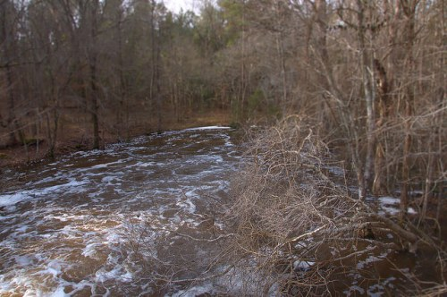 Jones Creek at Davis Mill Worth County GA Photograph Copyright Brian Brown Vanishing South Georgia USA 2015
